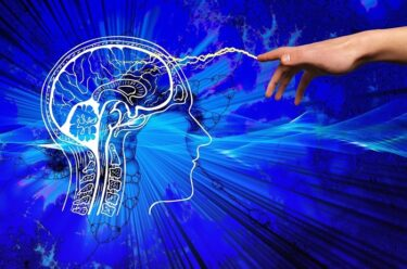 『稼げる脳』のその先に『稼ぎ続ける脳』がある!